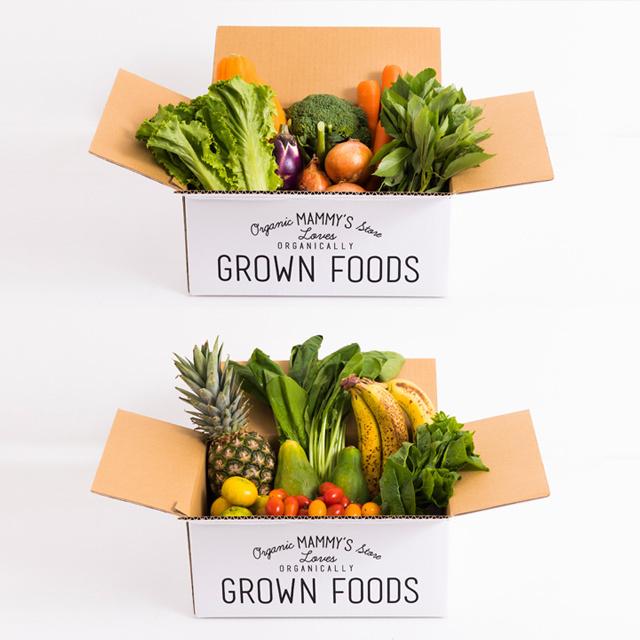 オーガニックBOX有機野菜S+ オーガニックBOXグリーンスムージーS 定期セット
