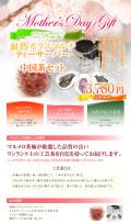 父の日『耐熱ガラスマルチティーサーバー+中国茶セット』 送料無料
