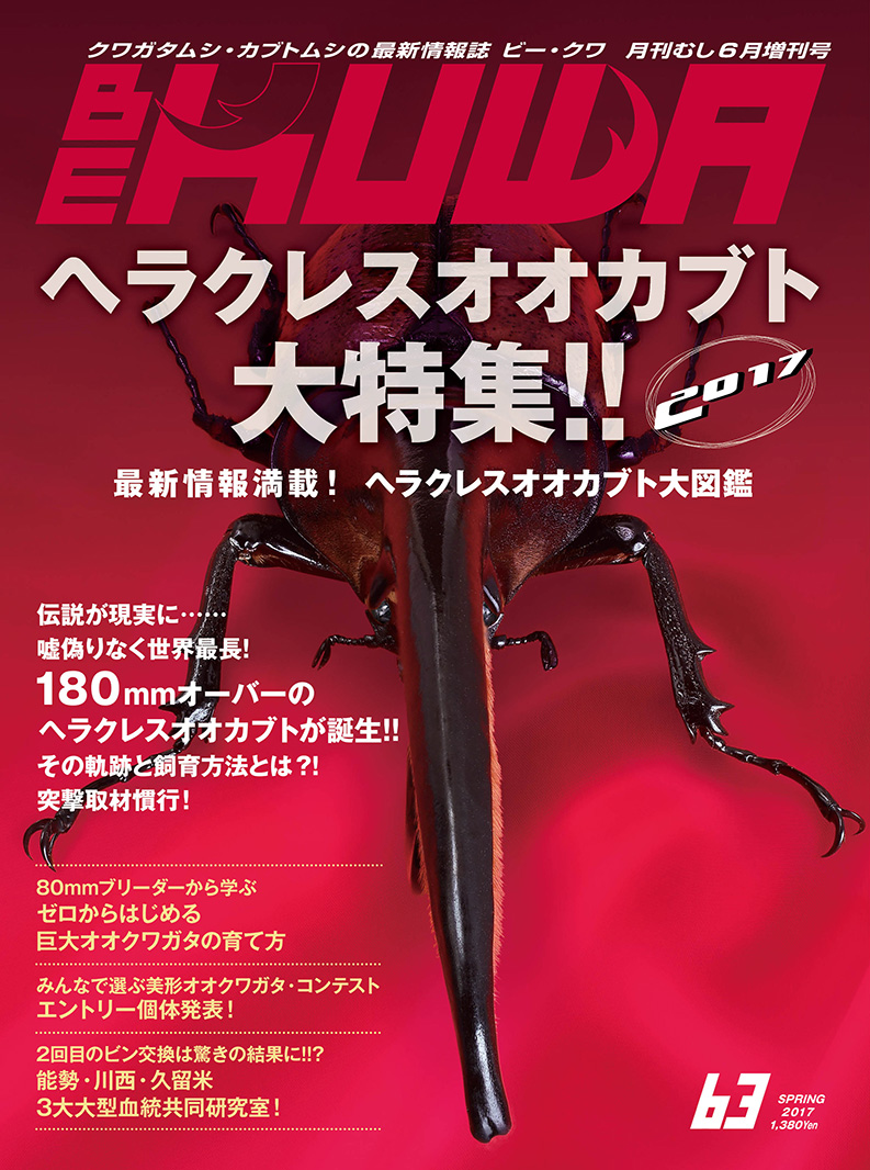 メール便送料無料!【新品】BE-KUWA 63 最新号