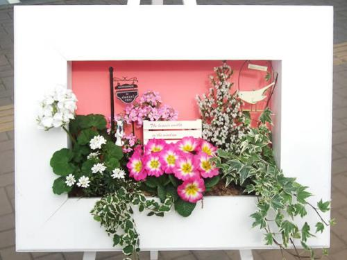 花はなフレーム 寄せ植えセット