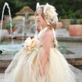 美しい夢のプリンセスチュチュドレス「Beautiful Dream Princess Tutu Dress」0歳から6歳