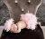 newbornフェザースカートレンタル