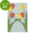 【限定】ポストカード コザクラインコ柄(91803324)