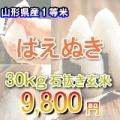 23年産 山形県はえぬき1等 石抜玄米30キロ/30kg