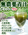 無農薬 青汁 桑葉