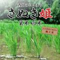 香川県産農薬完全不使用の米