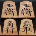 将棋駒 天竜作 名人駒(清安) 根杢 盛揚 中古