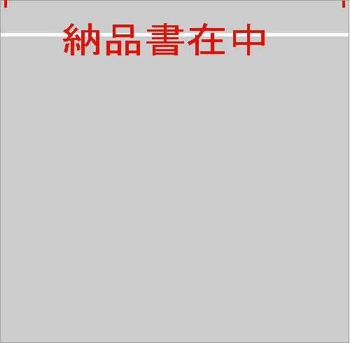 デリバリーパック(L-703)納品書在中2000枚 135x155(20)mm
