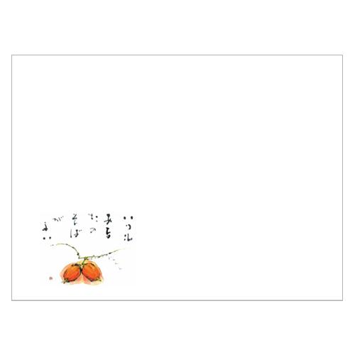 ★ランチョンマットV995(からすうり)100枚