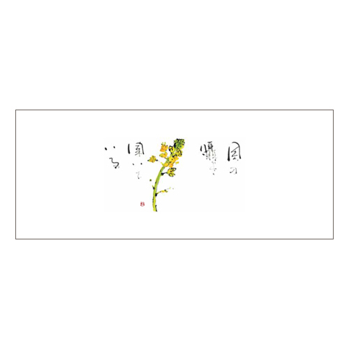箸マットV971(菜の花)2000枚