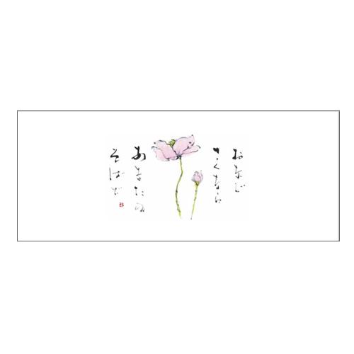 ★箸マットV982(しゅうめいぎく)100枚