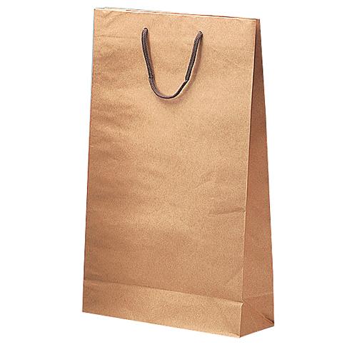 (K-246)手提袋一升瓶2本用 100枚