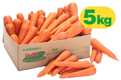 ジュース用ニンジン(5kg)