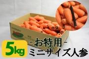 ミニサイズ・ジュース用ニンジン(5kg)