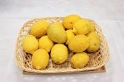 国産レモン(3kg)傷あり・不揃い