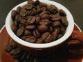 chocolada_beans