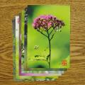 やぎゅうしんご森のポストカード「木の花」
