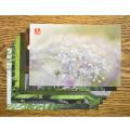 やぎゅうしんご森のポストカード「初夏」