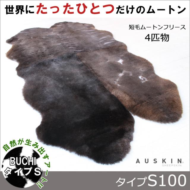 BUCHI-S100