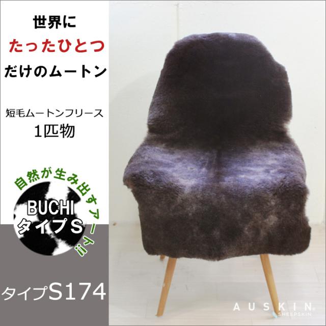 BUCHI-S174