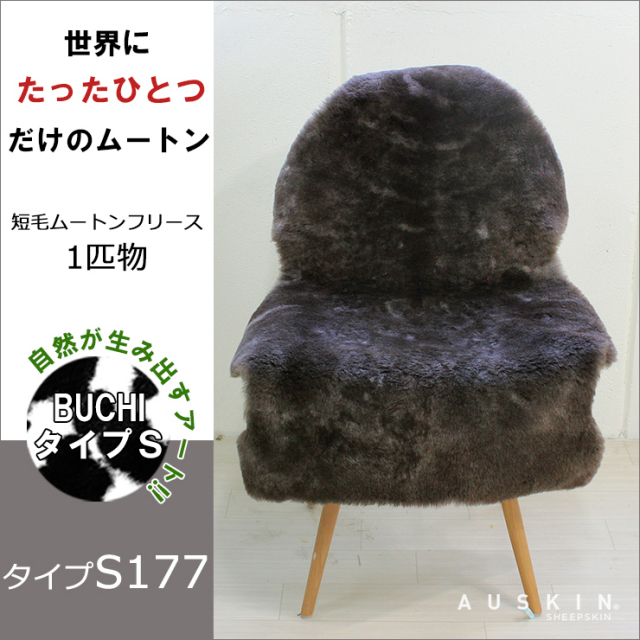 BUCHI-S177