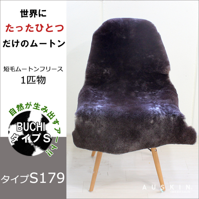 BUCHI-S179