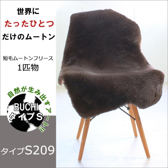 BUCHI-S209