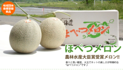 【地域団体商標】ほべつメロン 優品2玉入(3.2kg以上)