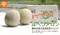 【地域団体商標】ほべつメロン 優品5玉入(8kg以上)