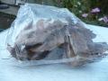 クワガタやカブトムシの隠れ家に最適なクヌギの落ち葉セット(約20枚入り)の販売