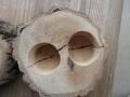 アウトレット、18gワイドカップ昆虫ゼリー用エサ皿2つ穴開き