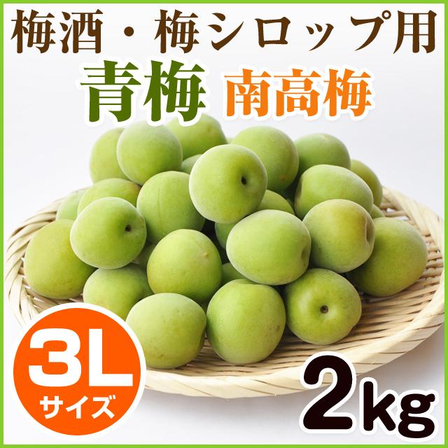 青梅 南高梅 3Lサイズ