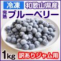 冷凍 ブルーベリー
