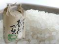 和歌山県産 自家製キヌヒカリ 5kg