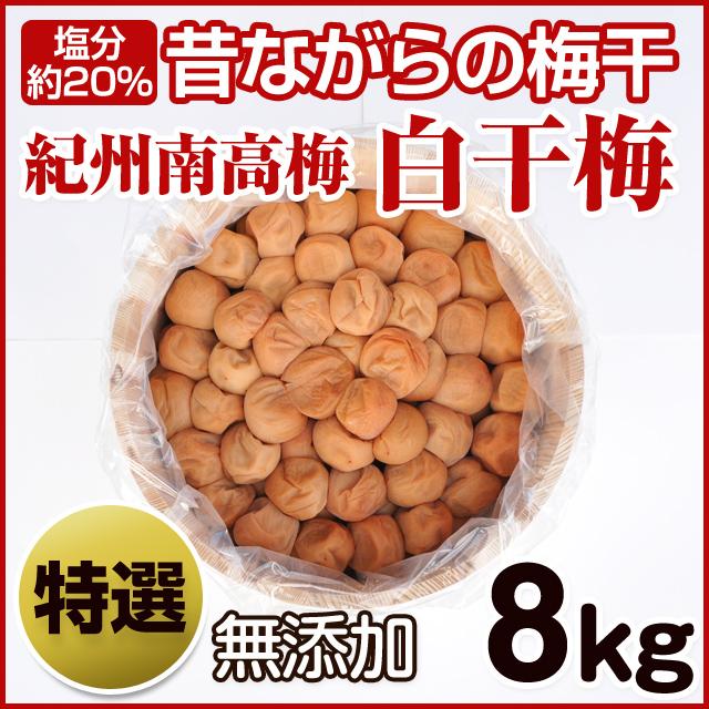 梅花樽 8kg