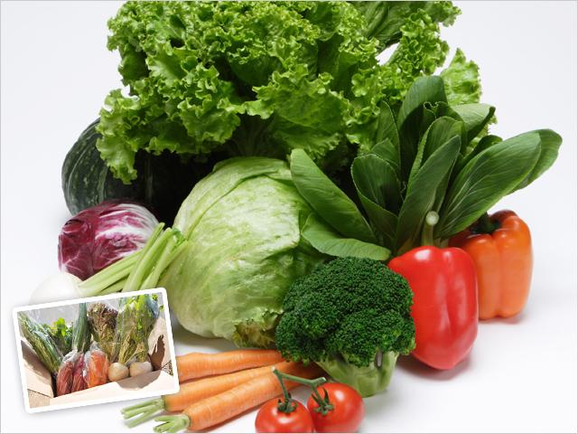 野菜の詰め合わせセット