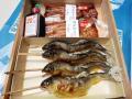 鮎塩焼き,子持鮎塩焼き,,国産鰻蒲焼き各2尾入(化粧箱入)