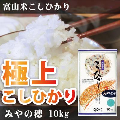 富山米こしひかり みやの穂 10kg 減農薬 (富山県産)