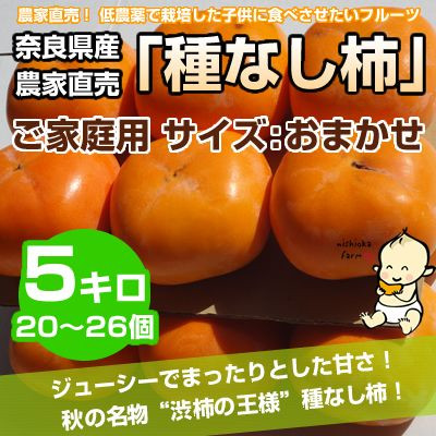 【期間限定】【送料込】 奈良県西吉野産 農家直売 種なし柿 ご家庭用 5Kg (20~26個入り) 10月から順次発送!