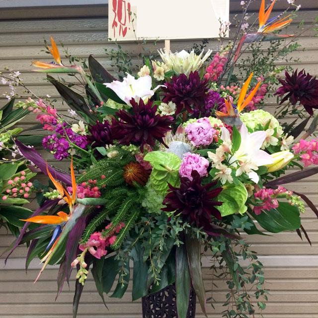 開店祝いスタンド花 お祝いスタンド花 ブラッシュバード 二子玉川の花屋 ネイティブフラワーイーダ