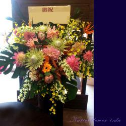 赤坂に贈るお祝いスタンド花 MATSURI