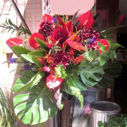 楽屋見舞いのスタンド花 レッドスパイク 二子玉川の花屋 ネイティブフラワーイーダ