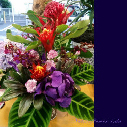渋谷区本町に贈るお祝い花 アレンジメント 【生花アレンジ】レドロン