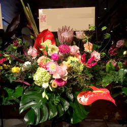信濃町に贈るスタンド花 胡蝶蘭と赤ダリア