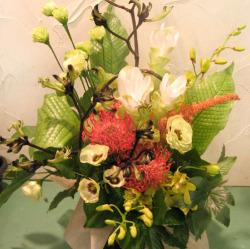 代田(世田谷区)に贈る大きなアレンジメント カンガルーポーとピンクッション