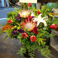 東麻布に贈るお祝い花 アレンジメント【生花アレンジ】アマゾネス