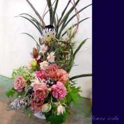 高輪に贈るお祝い花 大きなアレンジメント プロテアローズ