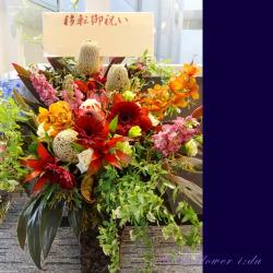 高輪に贈るお祝い花 大きなアレンジメント グローリア