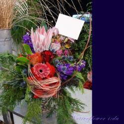 高輪に贈るお祝い花 大きなアレンジメント ネイティブサークル