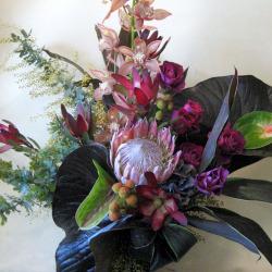 高輪に贈るお祝い花 大きなアレンジメント リュウカデンドロンと変わりシンビジューム